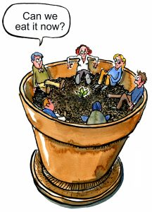people sitting in a pot looking at a sprout, wondering if they can eat it now illustration by Frits Ahlefeldt