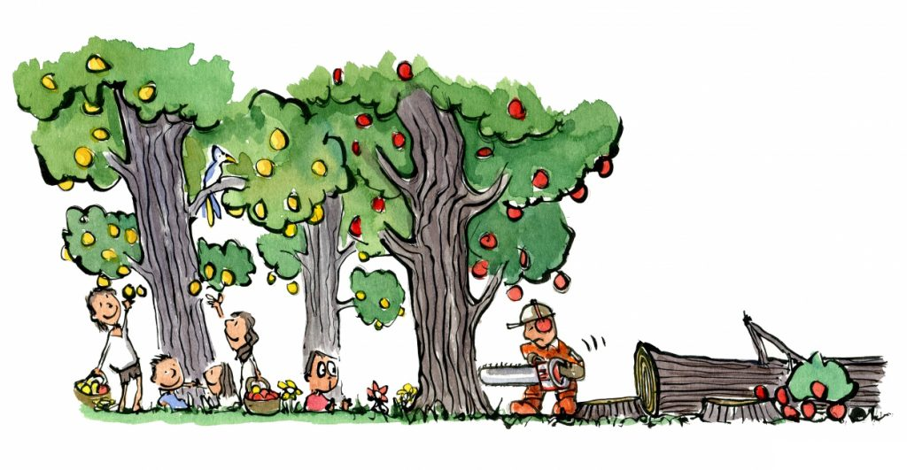 man cutting down trees with fruits on them illustration by Frits Ahlefeldt